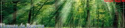 Floresta da Reserva