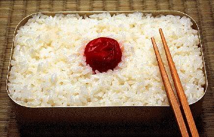 [Giới thiệu][Nhật Bản] Hộp Bento Hinomaru-bento1851412632374949090