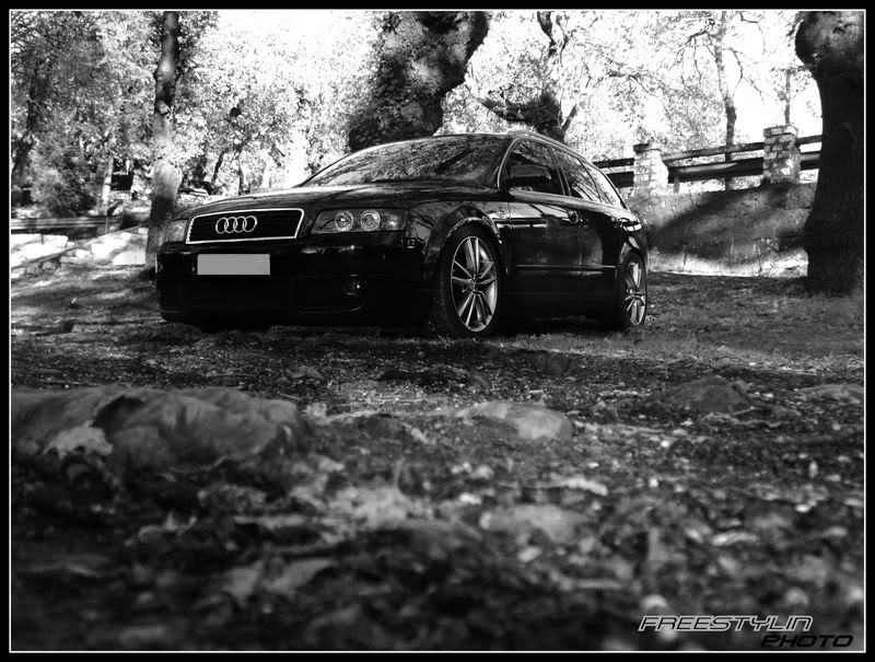Galeria do Ano 2008 AudiSportFans.com KO2