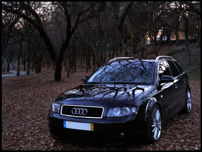 Galeria do Ano 2008 AudiSportFans.com Foto