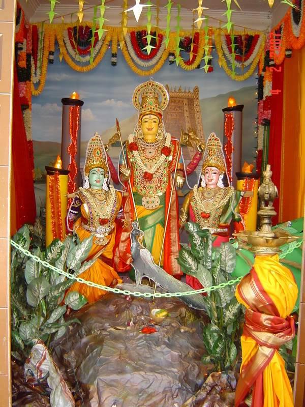 சிங்கை மாரியம்மன் கோவிலில் அறுபடை வீடு முருகன் DSC041582