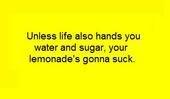 Read this before posting in the 'Avatars' forum! Lemonadesucks