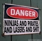 Read this before posting in the 'Avatars' forum! Ninjasandlasers