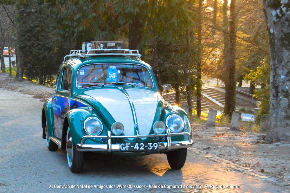 11º Convívio de Natal de Amigos dos VW Clássicos - 12 Dez. 2015 - Vale de Cambra DSC_0199_zpsevq4bgip