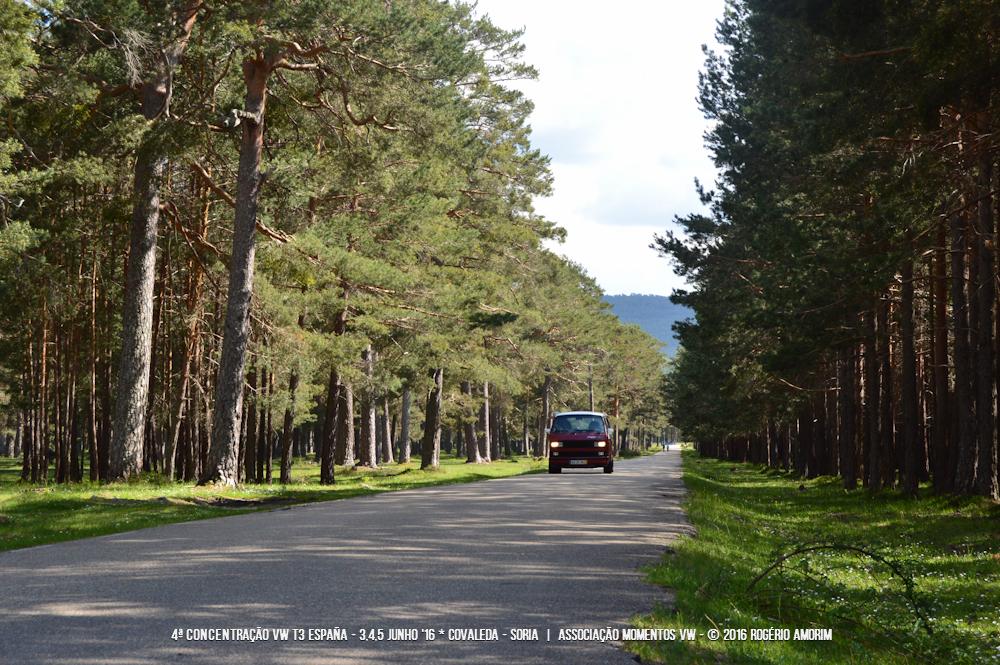 4ª Concentração VW T3 SPAIN - 3/4/5 junho 2016 - Covaleda, Sória - Espanha DSC_0034_zpswjnrpg6e