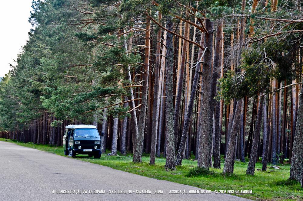 4ª Concentração VW T3 SPAIN - 3/4/5 junho 2016 - Covaleda, Sória - Espanha DSC_0038_zps6ztsd3mk