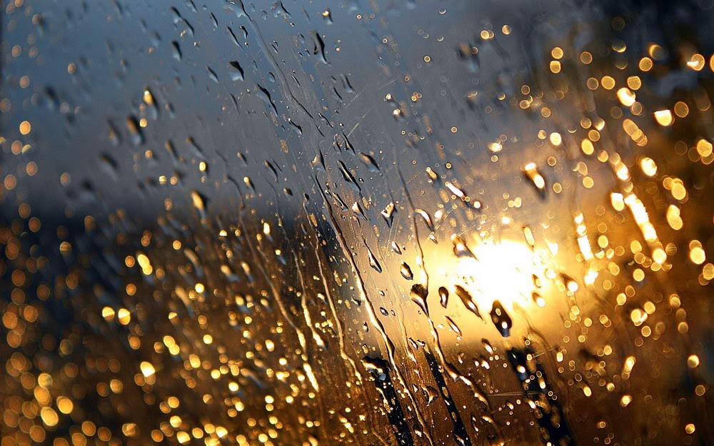 Giọt mưa trên kiếng REDSVN-Rain-09
