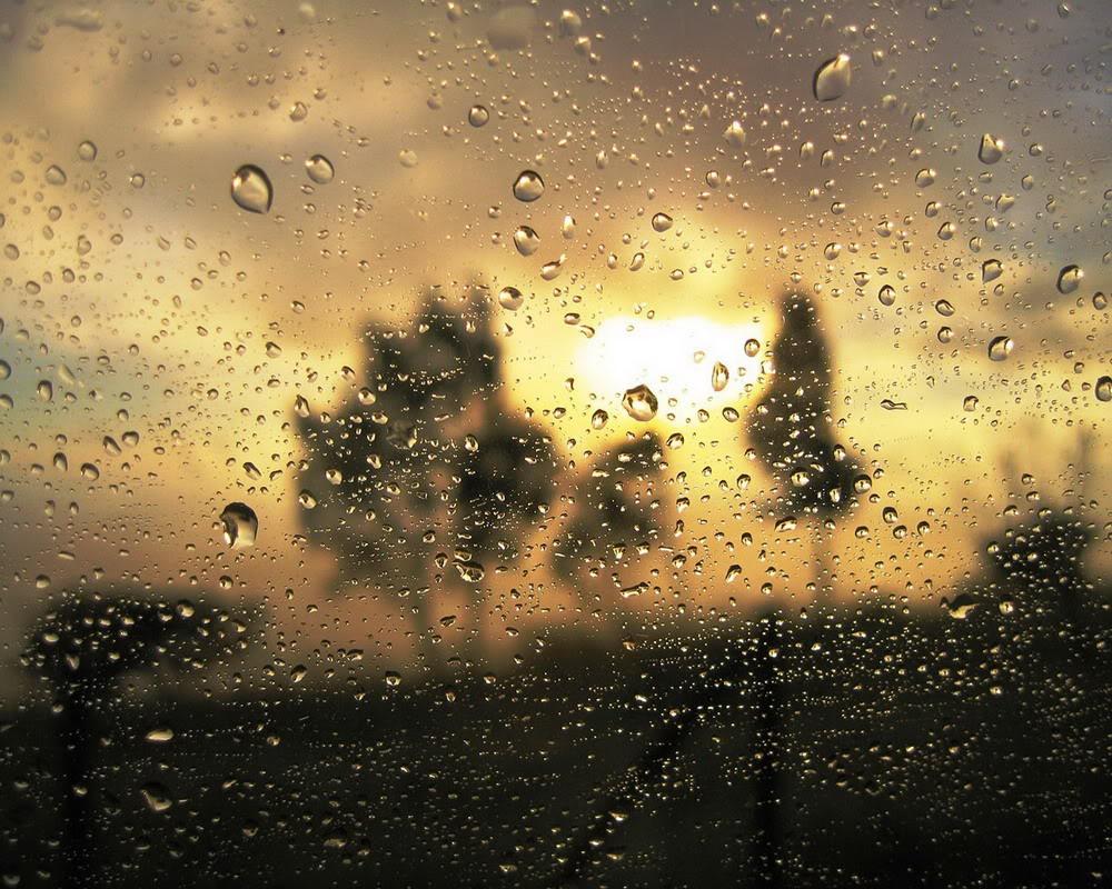 Giọt mưa trên kiếng REDSVN-Rain-12