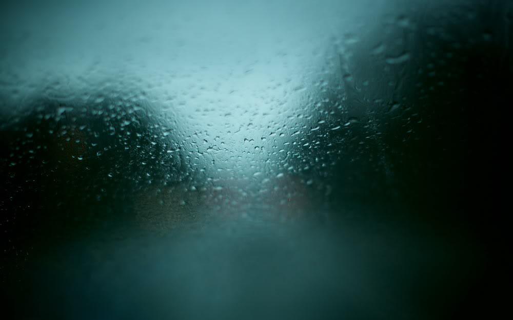 Giọt mưa trên kiếng REDSVN-Rain-13