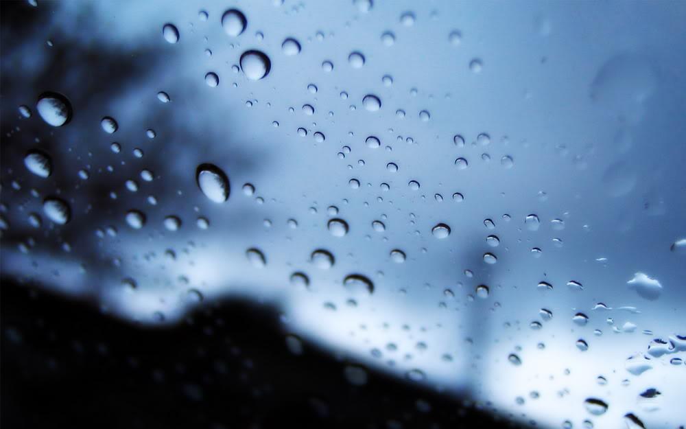 Giọt mưa trên kiếng REDSVN-Rain-15