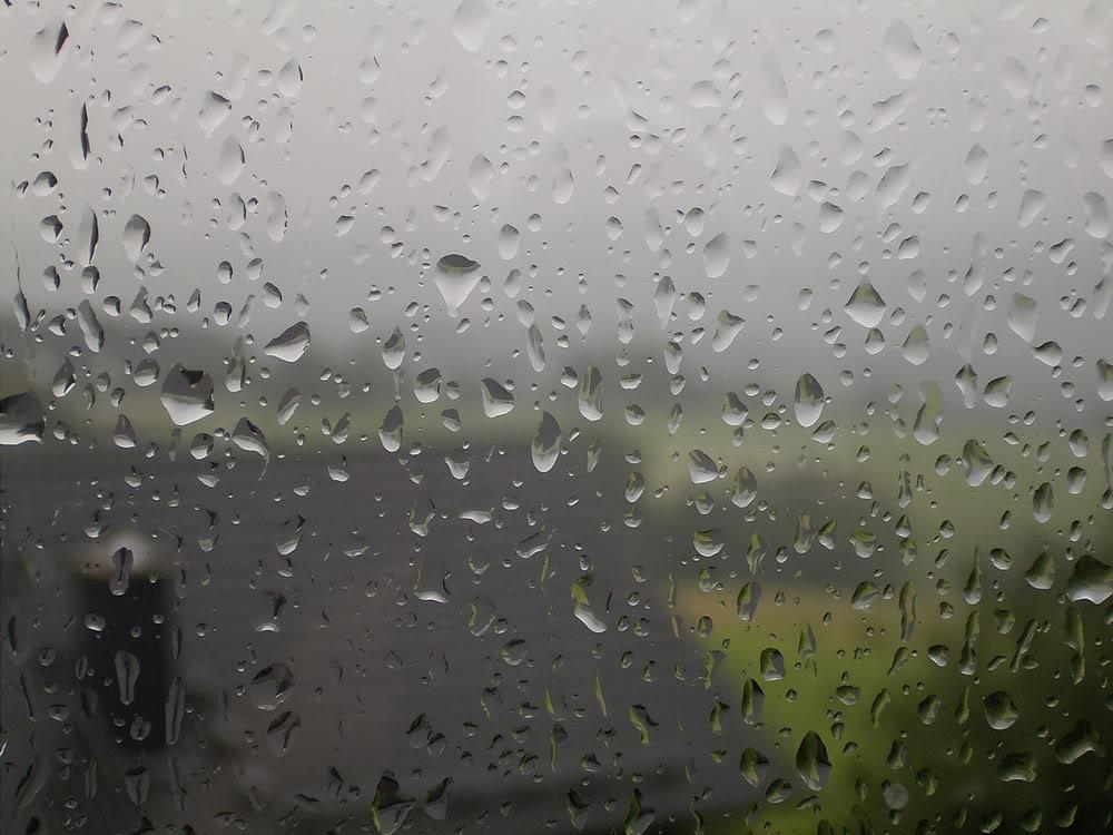 Giọt mưa trên kiếng REDSVN-Rain-22