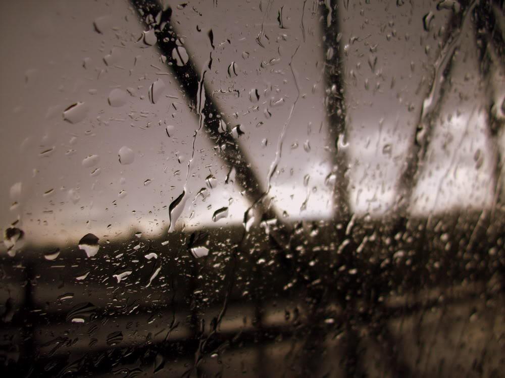 Giọt mưa trên kiếng REDSVN-Rain-24