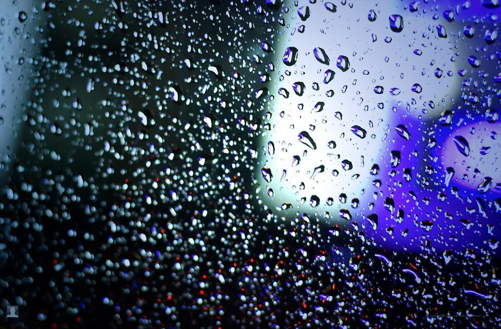 Giọt mưa trên kiếng REDSVN-Rain-36