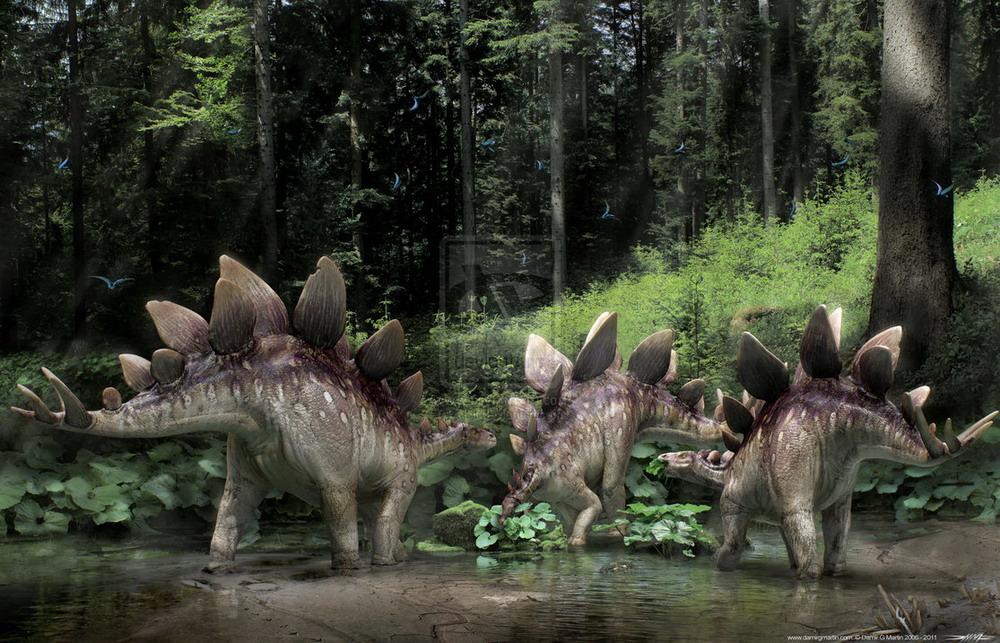 Hình ảnh tuyệt đẹp về thế giới loài khủng long Redsvn-Dinosaur-03