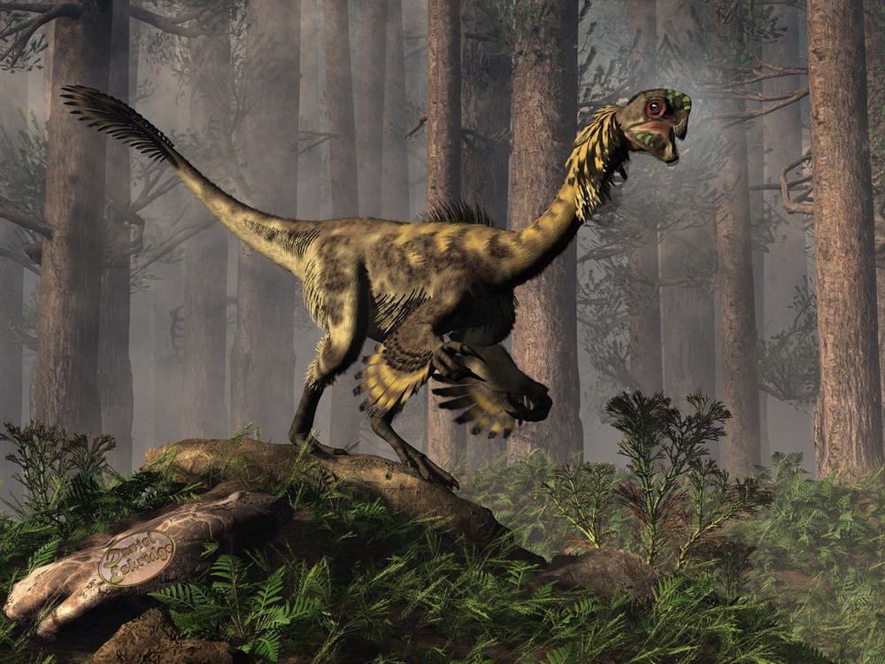 Hình ảnh tuyệt đẹp về thế giới loài khủng long Redsvn-Dinosaur2-04