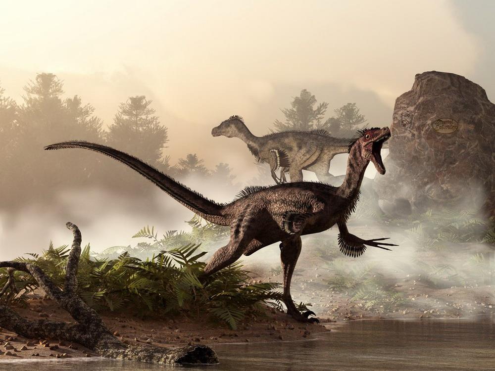 Hình ảnh tuyệt đẹp về thế giới loài khủng long Redsvn-Dinosaur2-10