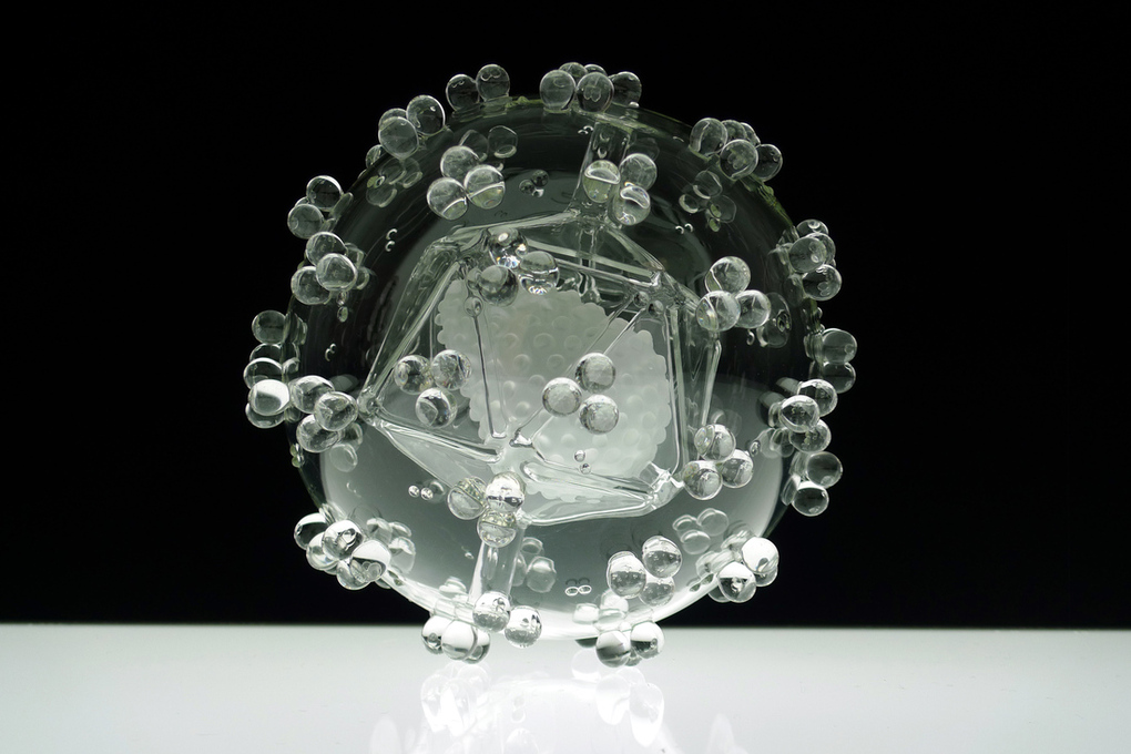 Khi những con virus chết người biến thành nghệ thuật 2312284_HIV-series2-for-press-area_verge_super_wide