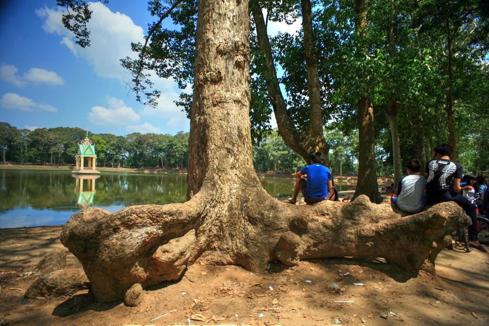 Lạc vào rừng cổ thụ kỳ quáigiữa thành phố ở Việt Nam Redsvn-Ao-Ba-Om-08