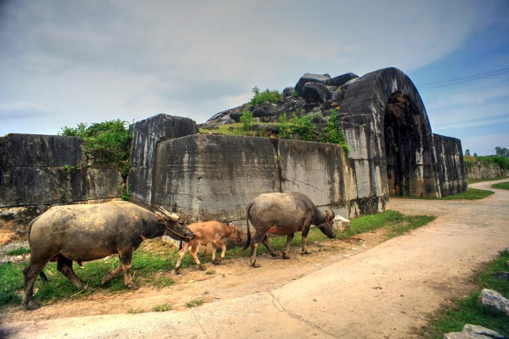 Khám phá tòa thành cổ kỳ vĩ nhất Việt Nam Redsvn-Thanh-nha-Ho-04