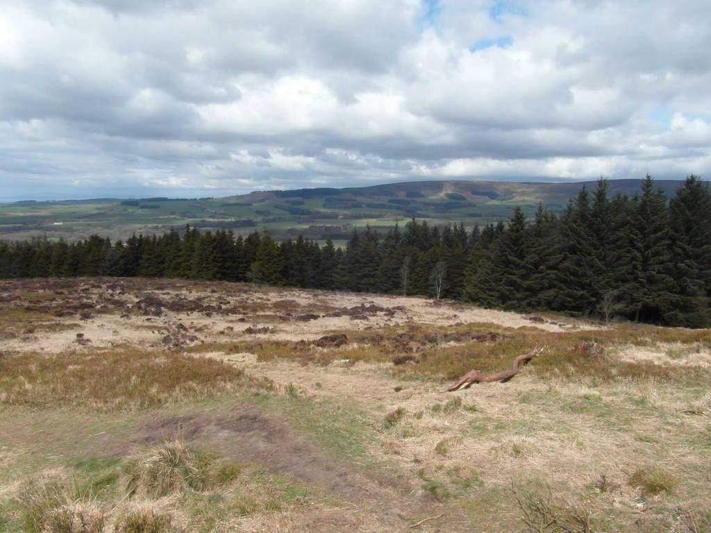 Gorgeous walk at Beacon Fell, Lancashire!  11053553_10155478009175611_5446624275651063361_o