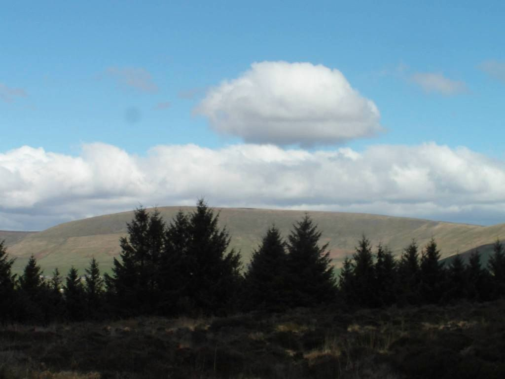 Gorgeous walk at Beacon Fell, Lancashire!  11154581_10155478019515611_8495609617240162110_o