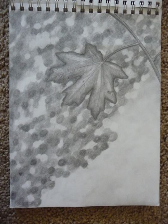First ever artist of the month!!!! 7-21-12drawings057