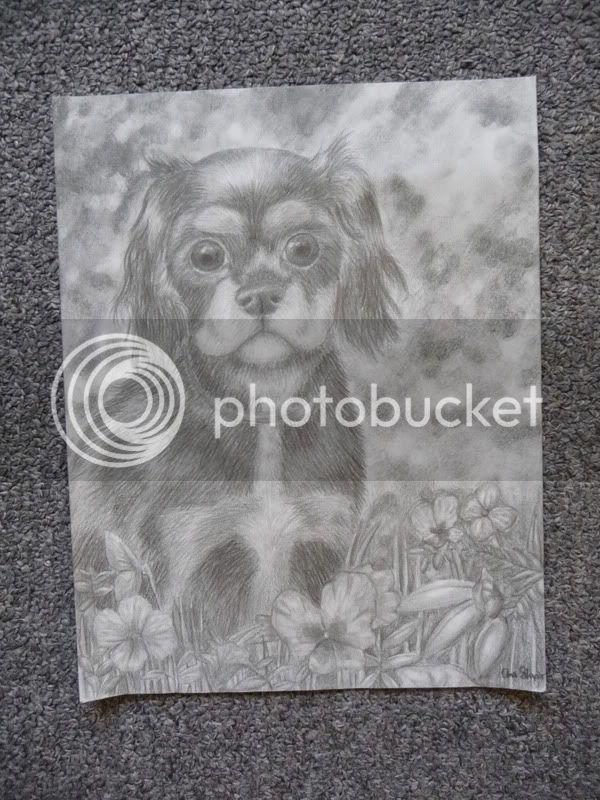 Dog drawing 7-21-12drawings064