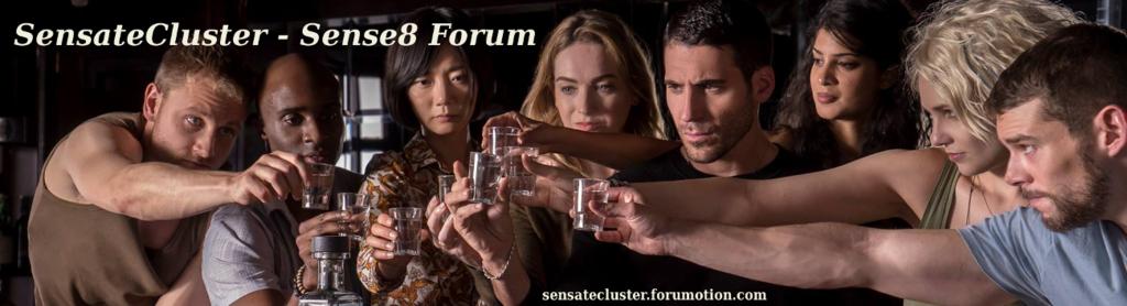 SensateCluster - Sense8 forum
