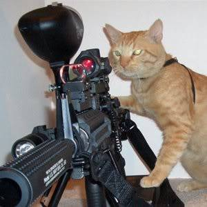 Spam Section 2 (Animal Fun Funny_Animals_With_Guns_6