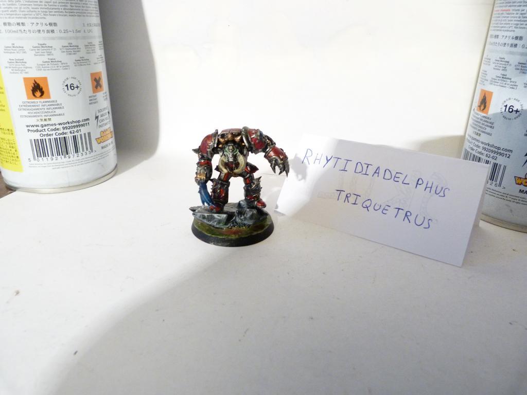 [ Rikikileur - Chaos ] Seigneur Mordikus P1060038_zpsfc35e552