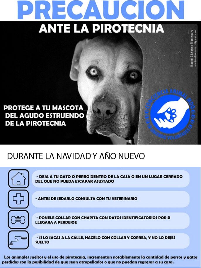 Recomendaciones para proteger a las mascotas del estruendo de los fuegos artificiales PIROTECNIAANIMALESRECOMENDACIONES_zps6dd96006