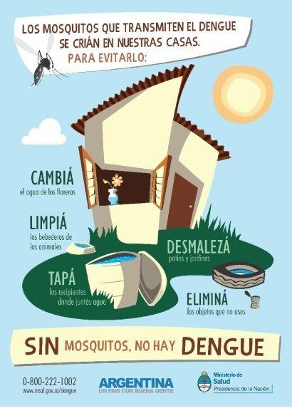 Prevención del dengue Dengue-MSN_zpst40smcjs