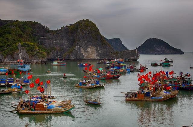 Hải Phòng thu hút khách du lịch bằng các vẻ đẹp rất riêng của mình  Hai-phong-7_zps5obsunjx