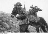 Καλπάκι 3 Νοεμβρίου 1940 Th_wss-karstwehr-bat-training5
