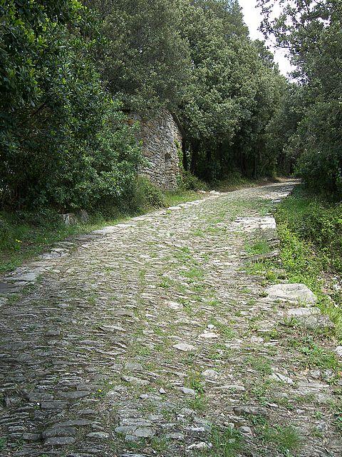 Καλπάκι 3 Νοεμβρίου 1940 - Σελίδα 5 Path-paved-stones_zps614ee61c