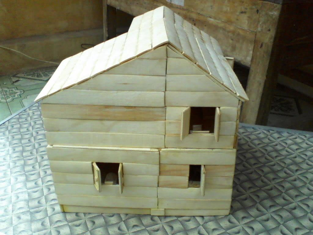 Lần làm handmade thứ hai - Mô hình nhà P17-03-12_11061