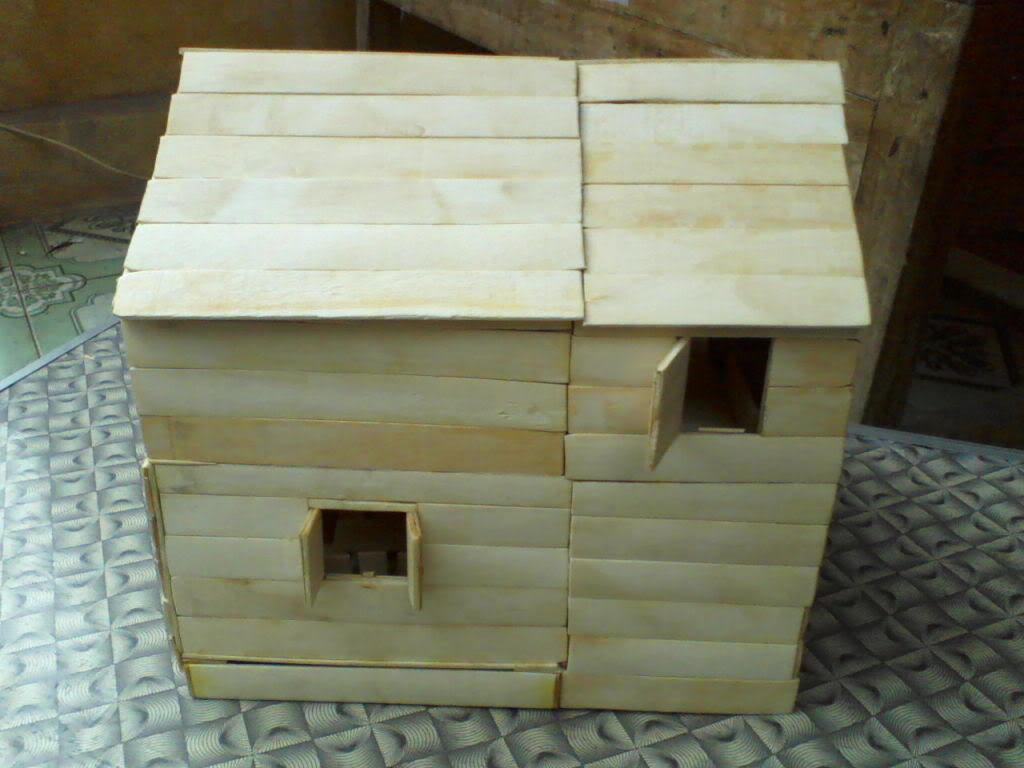 Lần làm handmade thứ hai - Mô hình nhà P17-03-12_11062