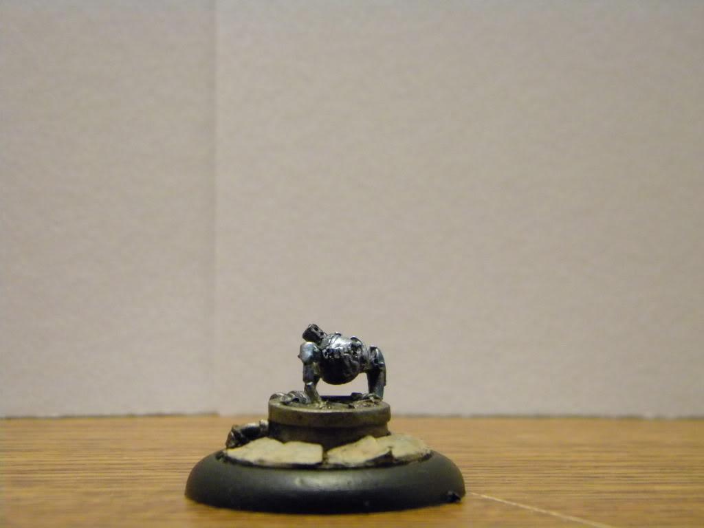 Malifaux armies.... DSCN3384