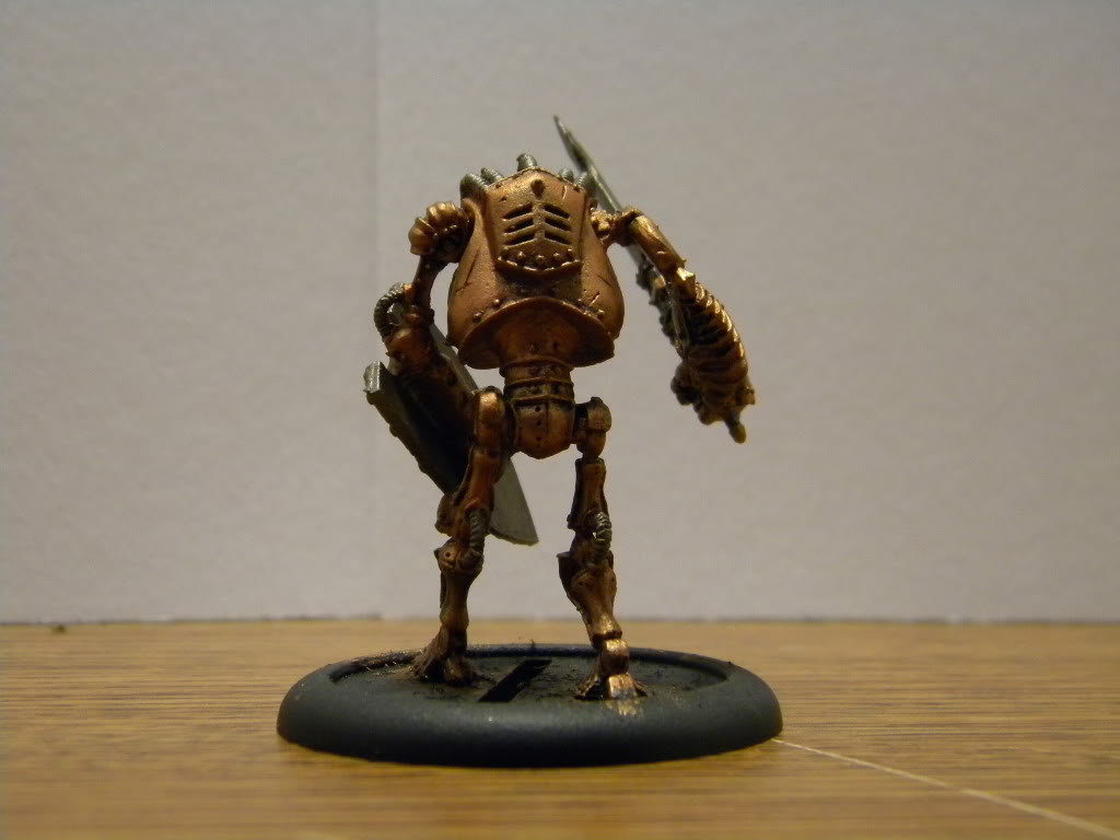 Malifaux armies.... DSCN3397
