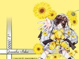 [Gintama FC][X/1999] Yuzuriha Nekoi Th_4-10