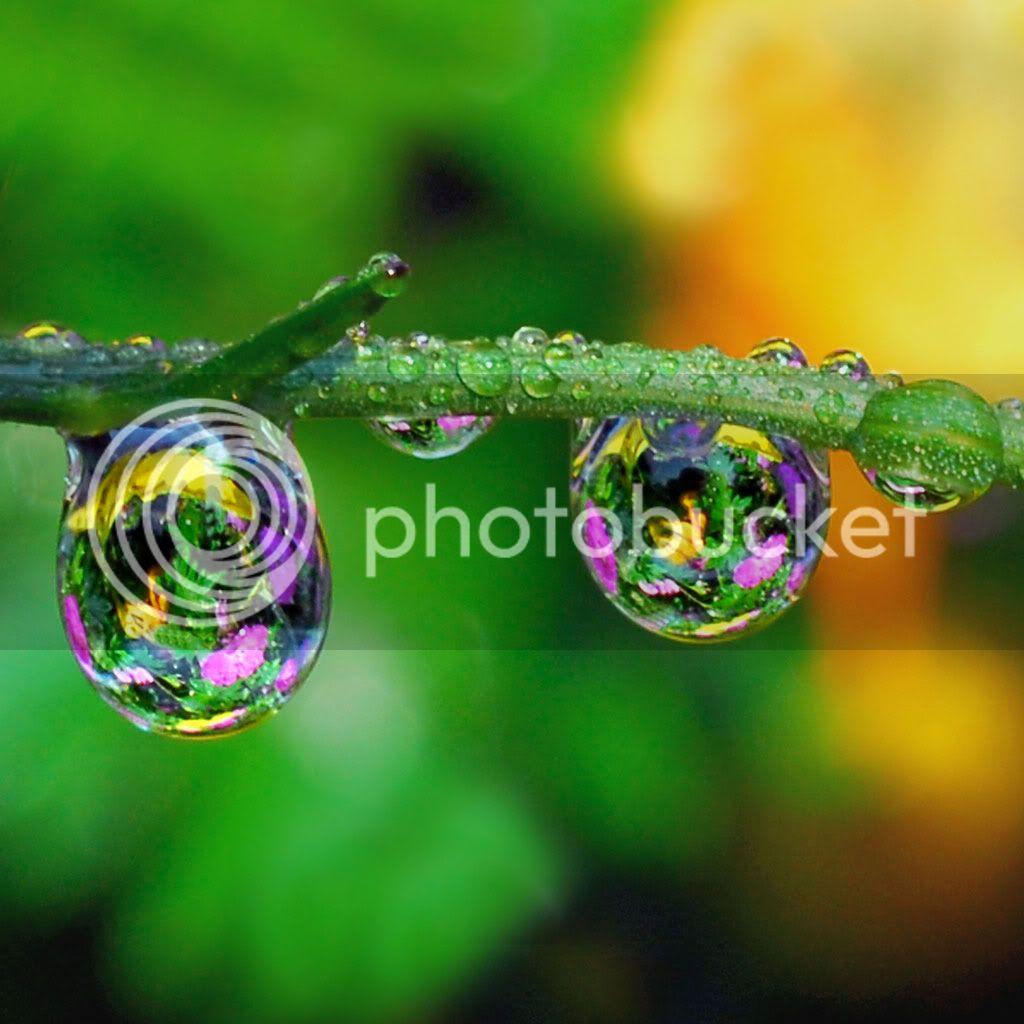 Water Drops HD Desktop Wallpapers Water-drops-ipad-wallpaper_zpsdeaf50b9