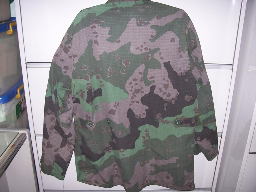 various camouflage 102_1681_zpsf3d0fb06