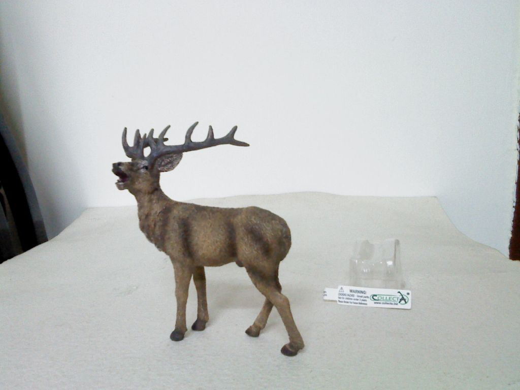 Dr.Narayanan CollectA collection - Page 2 Bellowingstag