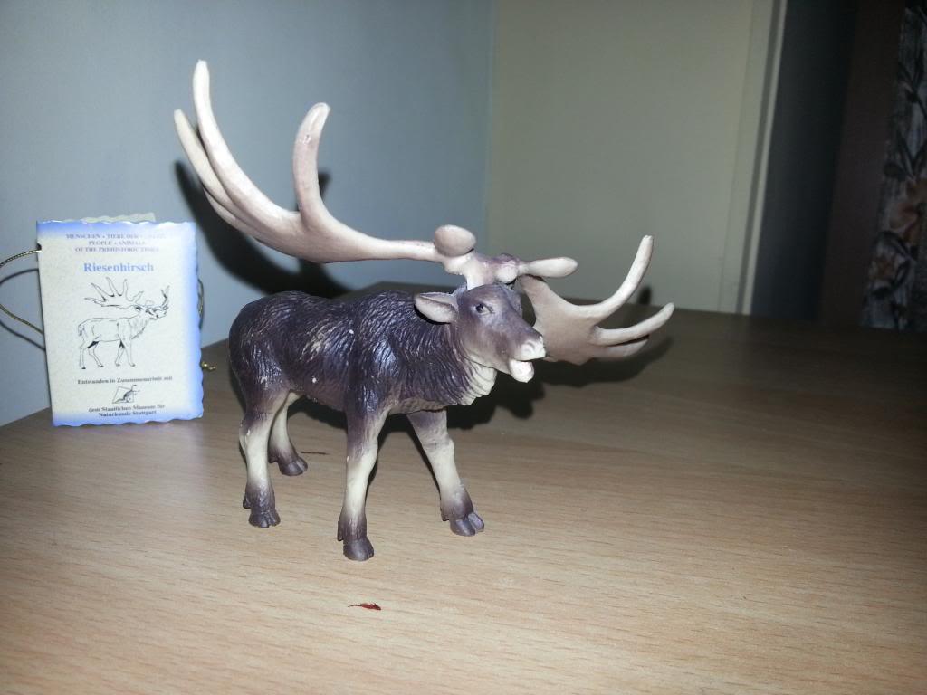 My Bullyland  arrivals  GiantdeerMegalocerosgiganteus_zps477b243f