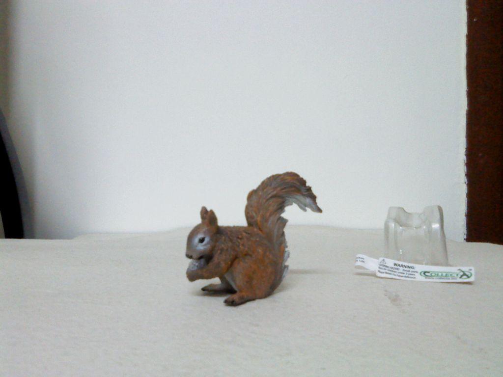 Dr.Narayanan CollectA collection Redsquirrel