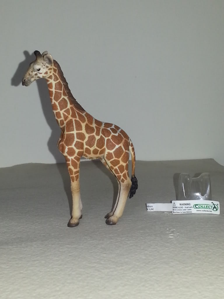 Dr.Narayanan CollectA collection - Page 2 ReticulatedGiraffecalf1
