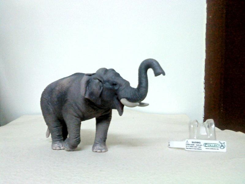 Dr.Narayanan CollectA collection Rsz_1asian_elephant