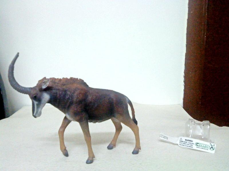 Dr.Narayanan CollectA collection Rsz_1sable_antelope_female
