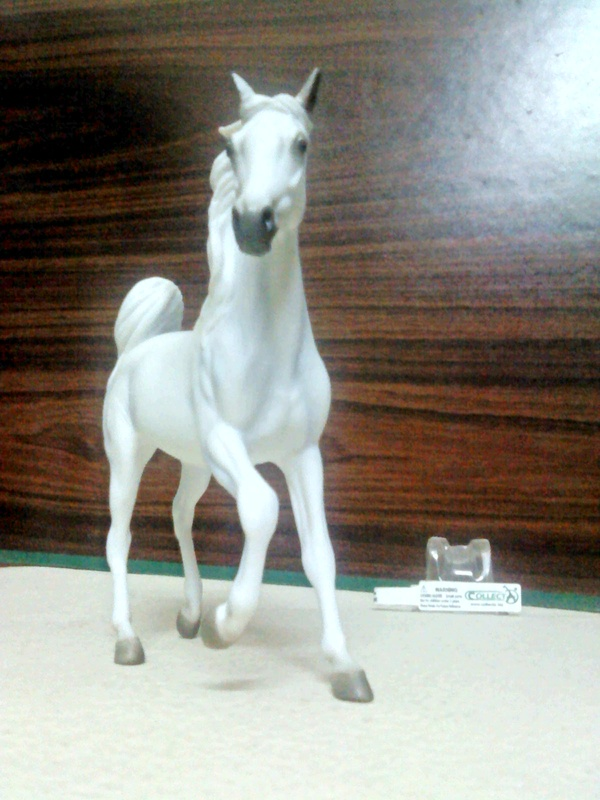 Dr.Narayanan CollectA collection Rsz_1white_arabian_mare__4-1