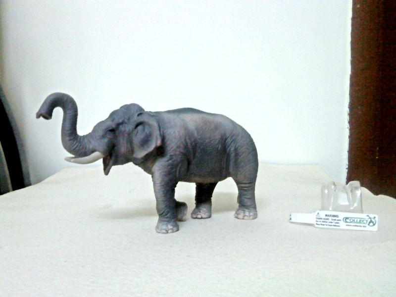 Dr.Narayanan CollectA collection Rsz_asian_elephant_1